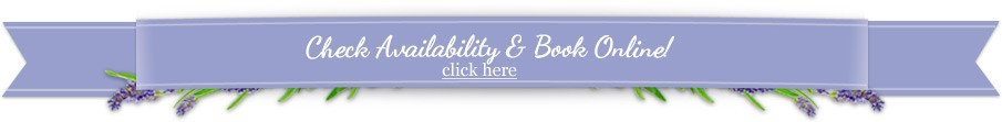 Check Availability Banner