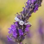 Ring on Lavender