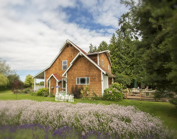 lavender farm vacation rental