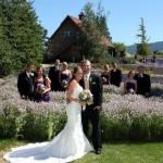 Purple Haze Lavender Wedding