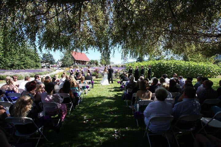 Weddings: Outdoor Wedding Venue - Purple Haze Lavender (Sequim, WA)