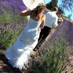 Purple Haze Lavender Wedding