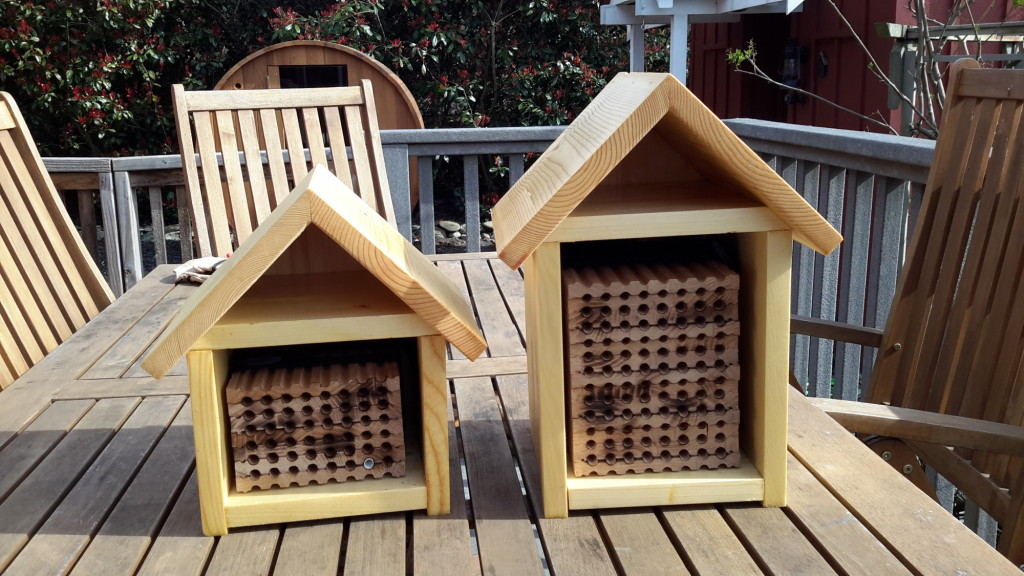 photo of mason bee houses